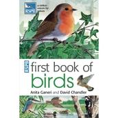 First Book of Birds