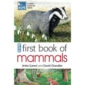 First Book of Mammals