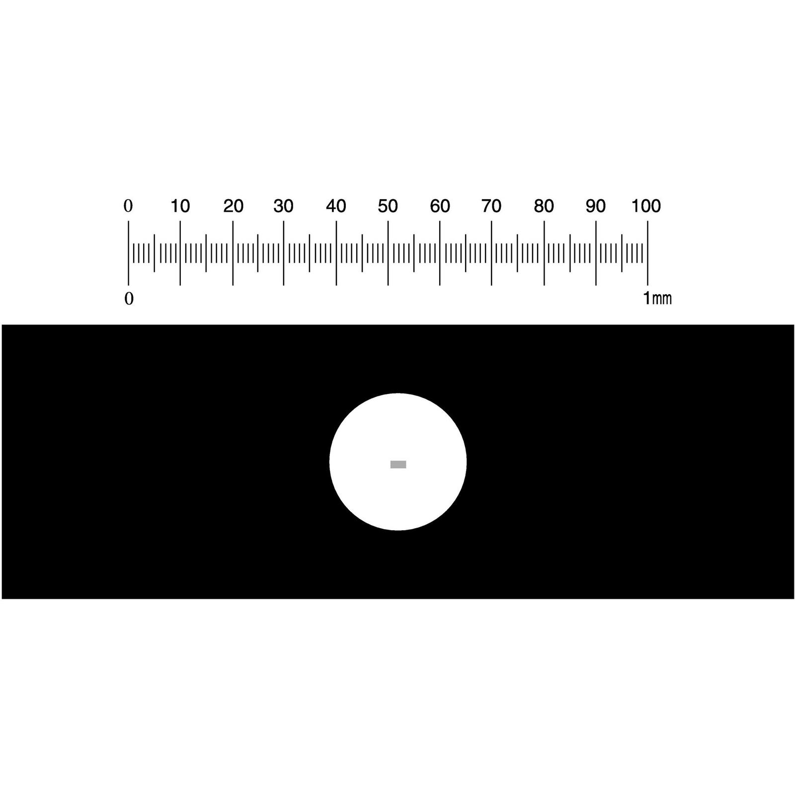Stage micrometer philip harris stage micrometer buycottarizona Gallery
