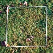 Frame Quadrat Pack of 5