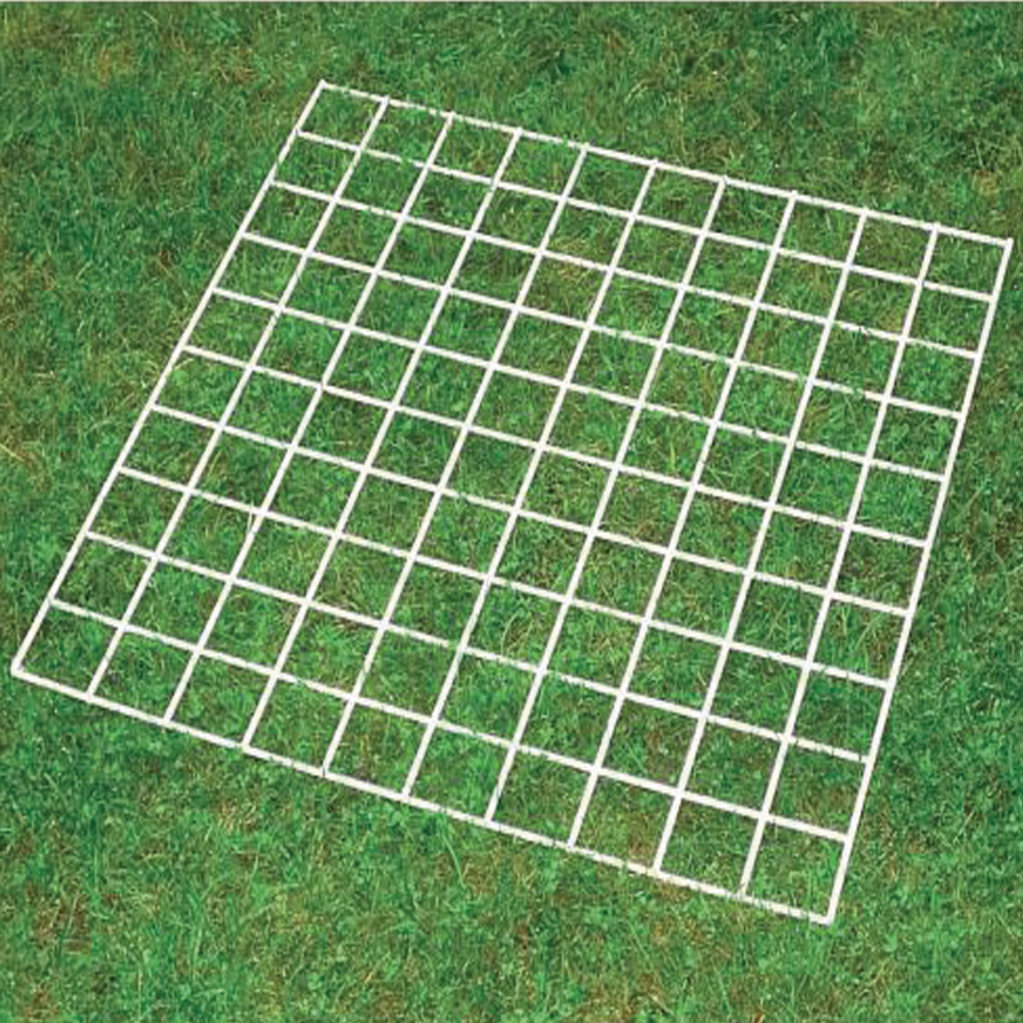 Grid Quadrat 100 Squares Philip Harris