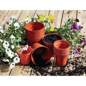 Plant Pots 100mm