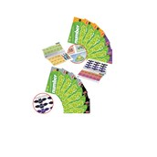 Stile Counting and Understanding Number Books 1-6