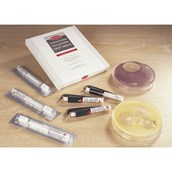 Antibiotic Sensitivity Discs - Penicillin G, 10 Units - Pack of 50