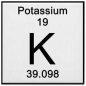 Potassium Metal - 25g