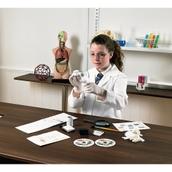 Fingerprint Kit for Non Porous Surfaces