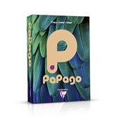 Papago Copier Paper (80gsm) - A4 - Salmon - Pack of 500