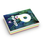 Papago Copier Paper (80gsm) - A4 - Assorted Pastels - Pack of 500