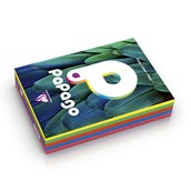 Papago Copier Paper (80gsm) - A4 - Assorted Deep - Pack of 500