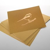 Stencil Card - 762 x 503mm