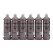 Classmates Ready Mixed Paint - 600ml - Burnt Umber - Pack of 6