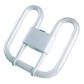 Square Compact Fluorescent Bulb - 2 Pin 16W White