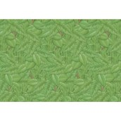 Fadeless® Extra Wide Tropical Foliage Design Display Paper Roll - 1218mm x 3.6m