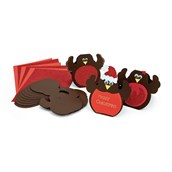 Robin Card Pack - Pack of 30