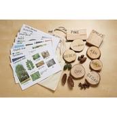 Forglen Forest Kit - Exploring British Trees