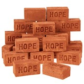 Real Mini Bricks