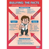 Bullying: The Facts poster