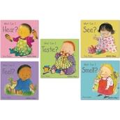 Small Senses Board Books - Pack of 5