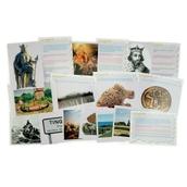 Thinking History Cards - Vikings