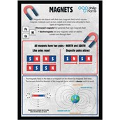 Magnets and Forces Poster