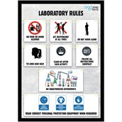 Laboratory Rules Poster