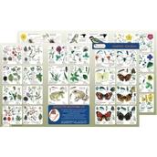Wildlife Habitat Guide: British Gardens