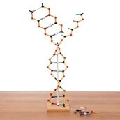 Orbit DNA-RNA Kit by Cochranes of Oxford Ltd