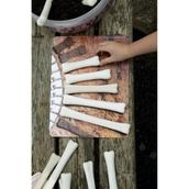 Dinosaur Bones Match and Measure Kit