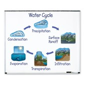 Magnetic Water Cycle