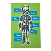 Skeleton Table Top