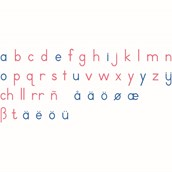 Nienhuis Montessori Large Movable Alphabet: International Print