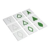 Nienhuis Montessori Leaf Cards
