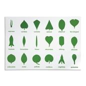 Nienhuis Montessori Botany Cabinet Control Chart