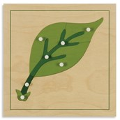 Nienhuis Montessori Botany Puzzle: Leaf