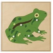 Nienhuis Montessori Animal Puzzle: Frog