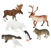Cold Environment Animals Set from Hope Education