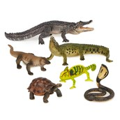 Reptiles Set from Hope Education