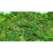 Green Moss - 100g