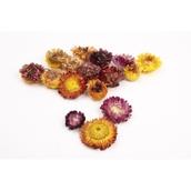 Dried Flower Heads - 75g