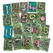 Natural Spring/Summer Number Cards