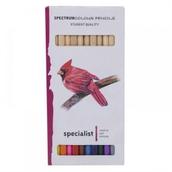 Spectrum Colour Pencils Assorted Colours - Pack of 12