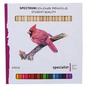 Spectrum Colour Pencils Assorted Colours - Pack of 24