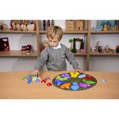 Ladybirds and Sorting Mat