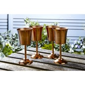 Metal Goblets from Hope Education