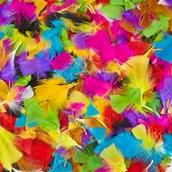 Classmates Rainbow Feathers Classpack