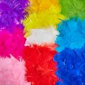 Classmates Solid Colour Feather Packs