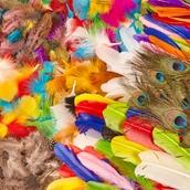 Classmates Super Feather Classpack