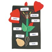 Plant In A Pocket - Wall Hanging