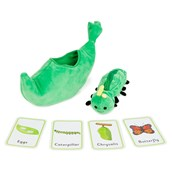 Butterfly Lifecycle Sequencing Set by Hope Education