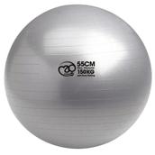 Swiss Ball & Pump - 150kg - Graphite - 55cm